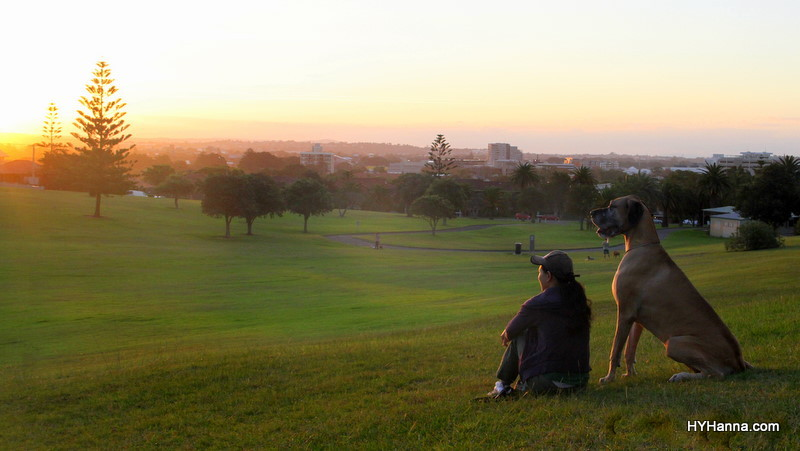 HY+Honey-NescaPark-sunsetview4